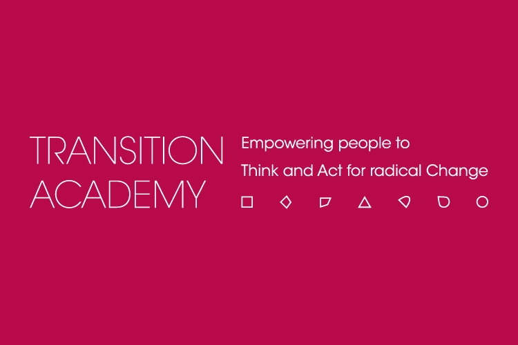002-transition-academy-website-thumb-01