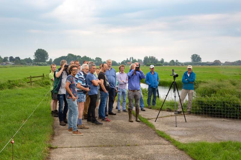 HDSR-boeren-weidevogels-kijken-credit-Chantal-Bekker